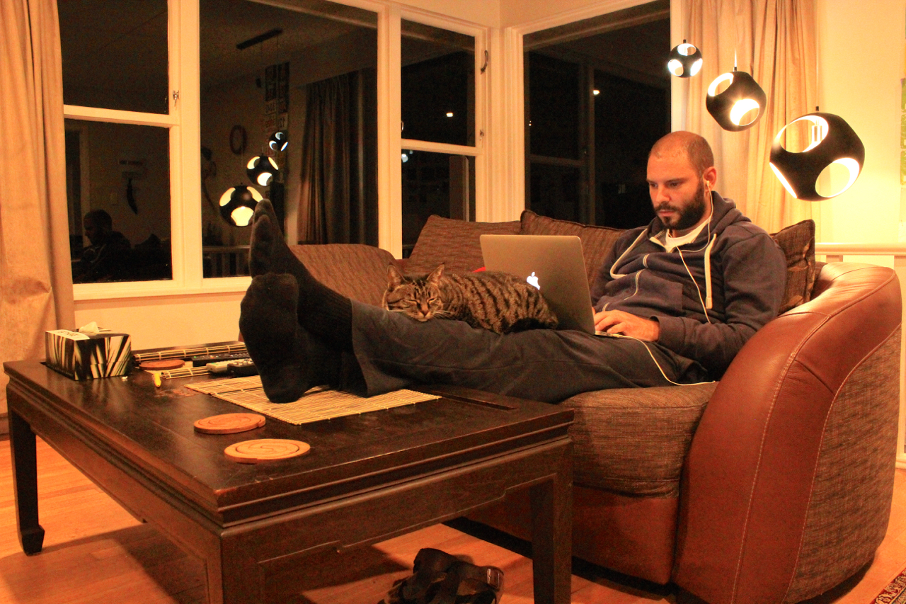 House sitting guide tomislav perko for House siting